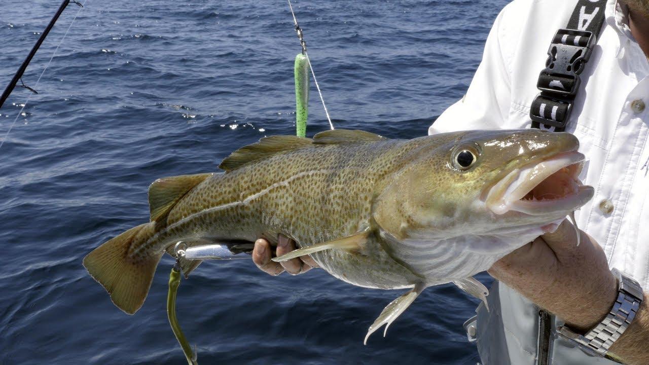 VMC Hook 10//0 Fluo Halibut Big Fish Jigkopf Norway Fishing Cod Island