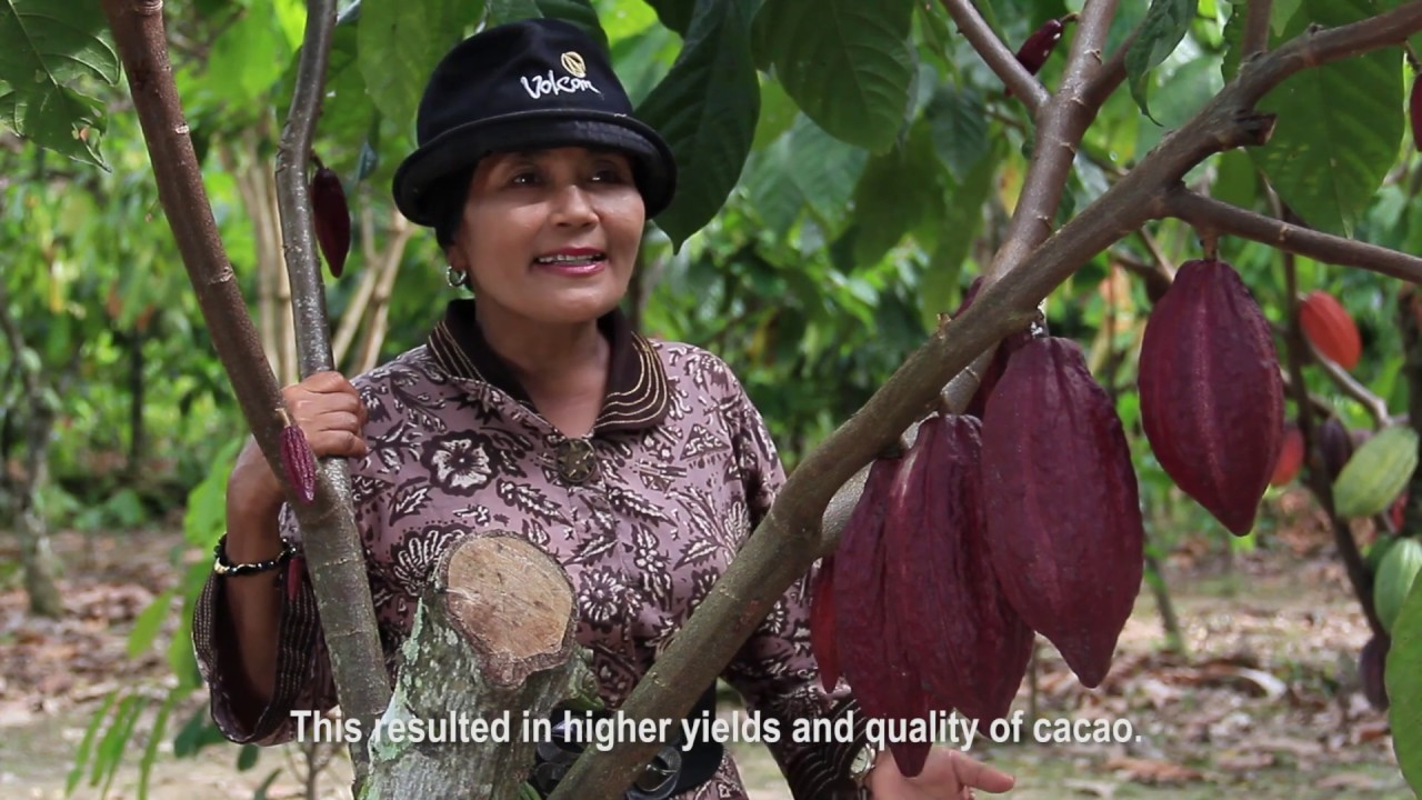 Partnership for Indonesia's Sustainable Agriculture (PISAgro) Video