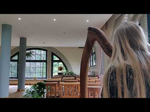 river-flows-in-you---yiruma-(harp-cover)-at-the-pumping-house