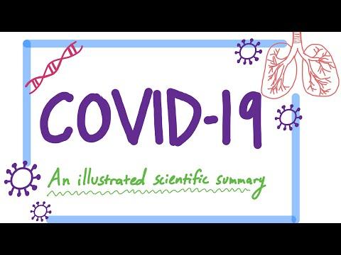 Covid-19: An Illustrated Scientific Summary