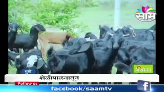 Agrowon Agriculture Exhibition : Information on Goat Farming