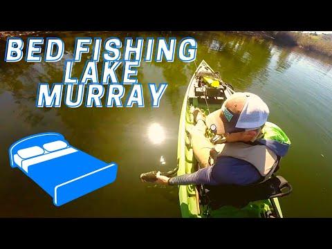 Bed Fishing Lake Murray Ca