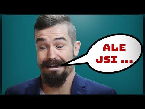 Víš já nejsem rasista, ALE ...