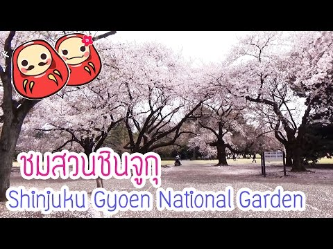 เที่ยวสวนญี่ปุ่น Shinjuku Gyoen National Garden