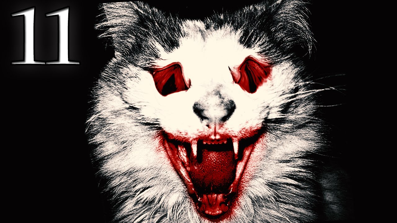 Watch Cats And Dogs Movie
