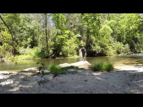 Camping/Trout Fishing Chattooga River