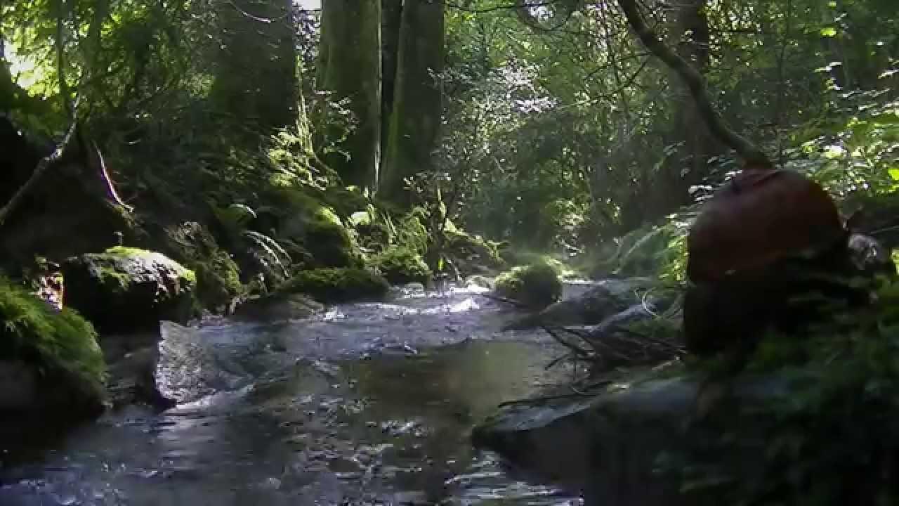 Ruisseau de montagne ambiance zen youtube - Ambiance zen lexemple de la maisonmrn ...