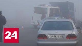 """Страшная авария на трассе """"Дон"""": водитель мог не заметить КамАЗ из-за тумана - Россия 24"""