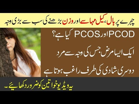 pcos/pcod-home-remedies-treatment-&-weight-loss,-symptoms-in-urdu-hindi