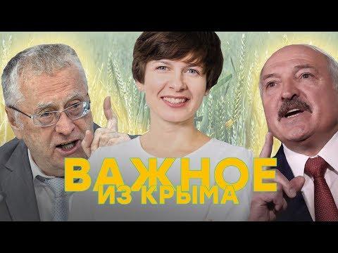 Жириновский – о