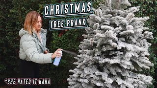 christmas tree prank on my sister!! vlogmas day 8