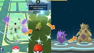 Shiny Larvitar evolves into Shiny Tyranitar in Pokemon Go Community Day!