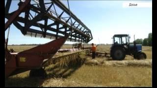 В Белокурихе продолжает работу 10 Зимняя зерновая конференция