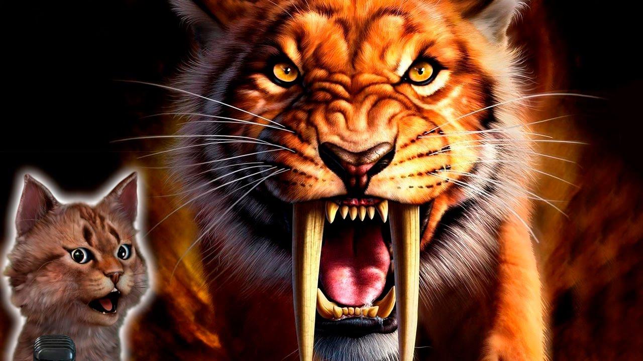 Картинки по запросу саблезубый тигр картинки