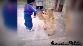 Борьба с медведем. Дагестан