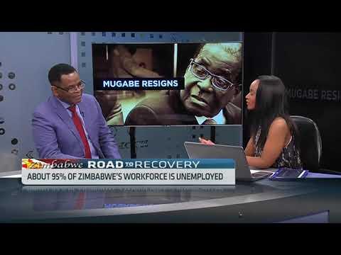 Zimbabwean Entrepreneur Mutumwa Mawere on Mugabe's resignation, reforms to turn around economy
