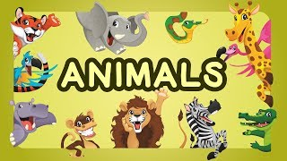 Teaching Animals Video for Toddlers - Animals Names For Children | English Learn Animals With Names