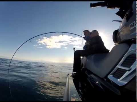 Catching big fish on the slow jig lures while for Catching big fish