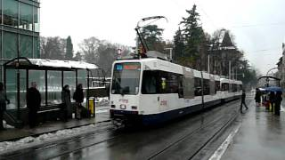 TPG Genève Tramway at Amandolier/SNCF