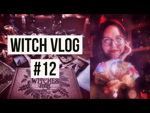 WITCH VLOG #12 The Witches Bounty, Grape Vines and Decks for Autumn
