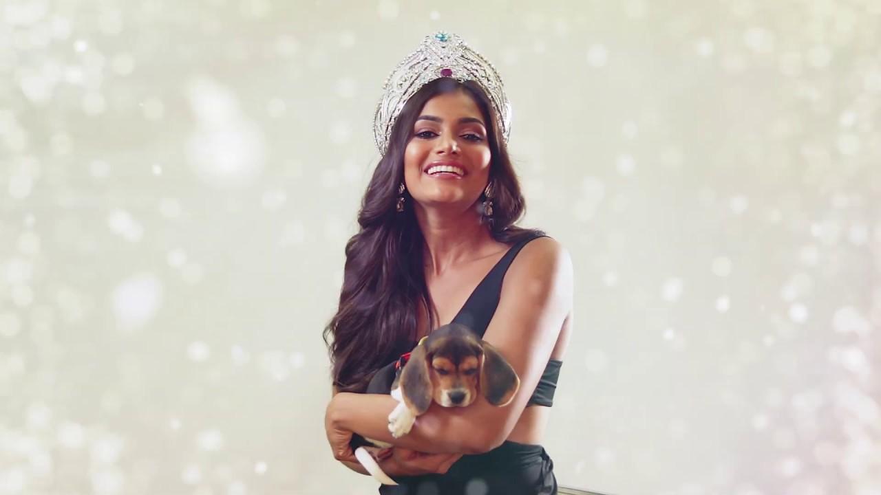 Feliz navidad y prospero año nuevo 2020 - Señorita Panamá