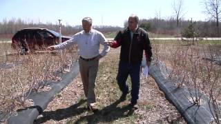 U.S. Rep. Fred Upton Visits Michigan Blueberry Farmers on EPA's