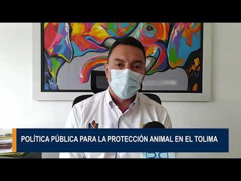 Política pública para la protección animal del Tolima