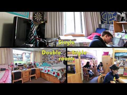 UC Irvine Housing - Arroyo Vista Theme House - Double ... Uc Irvine Dorm Rooms