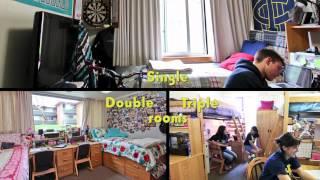 Uc Irvine Single Dorm Rooms