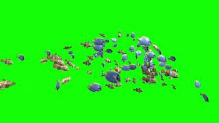 Huge School of Nemo And Dory Coral Fish Green Screen