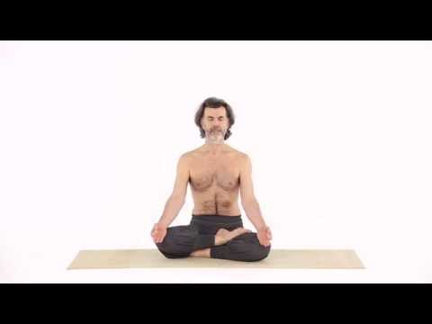 Half Lotus Pose Ardha Padma Asana