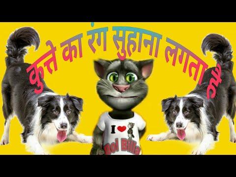 कुत्ते का रंग सुहाना लगता है |Kutte Ka Rang Suhana Lagta Hai| Funny Video Song By Bol Billa|Talking