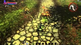 Kingdom Of Amalur : Reckoning  Weapon Types†Gameplay