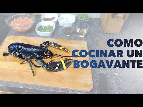 C mo cocinar bogavante o langosta f cil r pido y muy for Como cocinar jabali arguinano