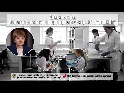 """Диагностика. Испытательный лабораторный центр ФГБУ """"ВНИИКР"""""""