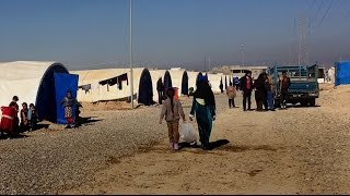 """Iraq: Local Authorities Displace Suspected """"ISIS-Families"""""""