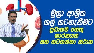 මුත්රා ආශ්රිත ගල් හටගැනීමට ප්රධානම හේතු කාරකයන් | Piyum Vila | 18 - 03 - 2021 | SiyathaTV Thumbnail
