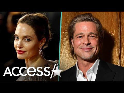 Brad Pitt Wins Joint Custody Of Children w/ Angelina Jolie