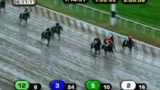 Ruler On Ice - 2011 Belmont Stakes