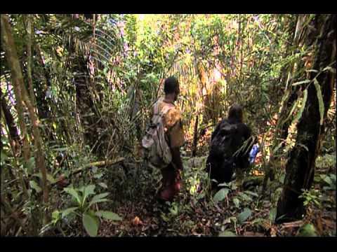 Ushuaia TV - Sentinelles de la Nature - Madagascar