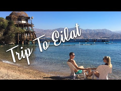 Trip to Eilat, Israel 2017 January - Dolphin Reef and Coral World Underwater Observatory