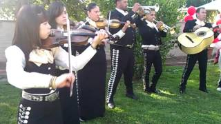 Mariachi Fuerza Mexicana- Perlitas