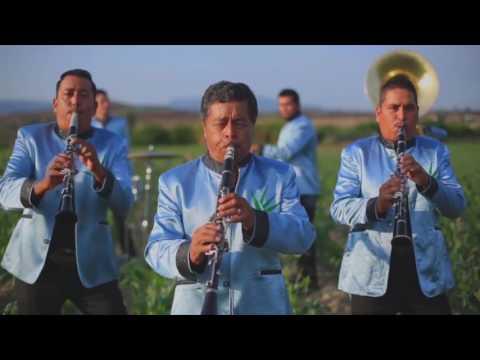 Viva la música tv(programa 1)