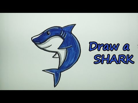 how draw shark step step - Myhiton