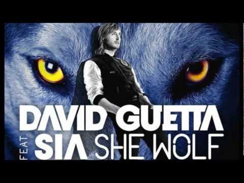 David Guetta - She Wolf (Falling To Pieces) Karaoke