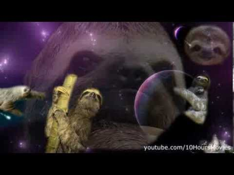 Sloths in space 10 hours