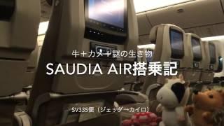 【サウディア航空】SV335便(ジェッダ→カイロ)搭乗記 by 牛+カメ+謎の生き物