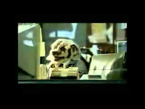 Badger Car Salesman Youtube