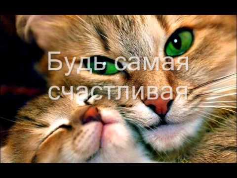 С днем рождения кот видео