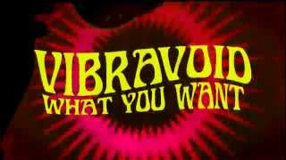 Vibravoid - What You Want (official audio)